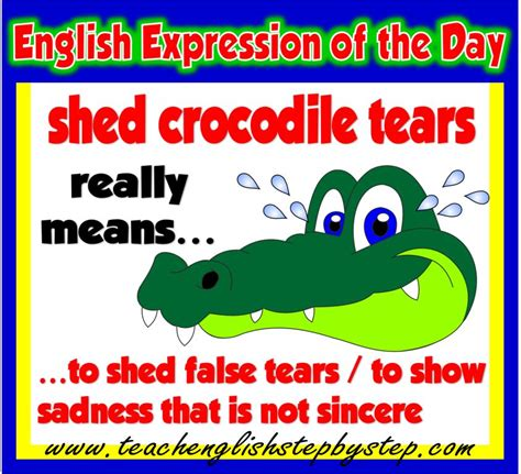 In The Shed Meaning by Idiomatic Expressions Teach Step By Step