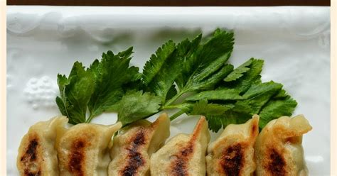 membuat npwp di medan indonesian medan food cara membuat gyoza how to make gyoza