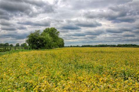 image gallery illinois landscape