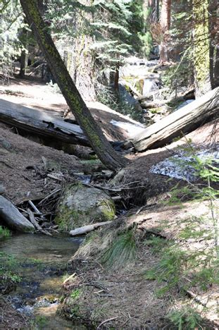 Two Rivers Rv Park And Cground - sequoia national park page 3