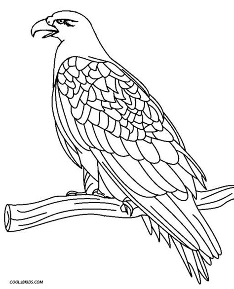 Eagle Face Coloring Coloring Pages Eagle Coloring Page