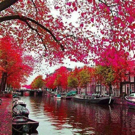 Autumn Pink pink autumn in bruge belgium wanderlust