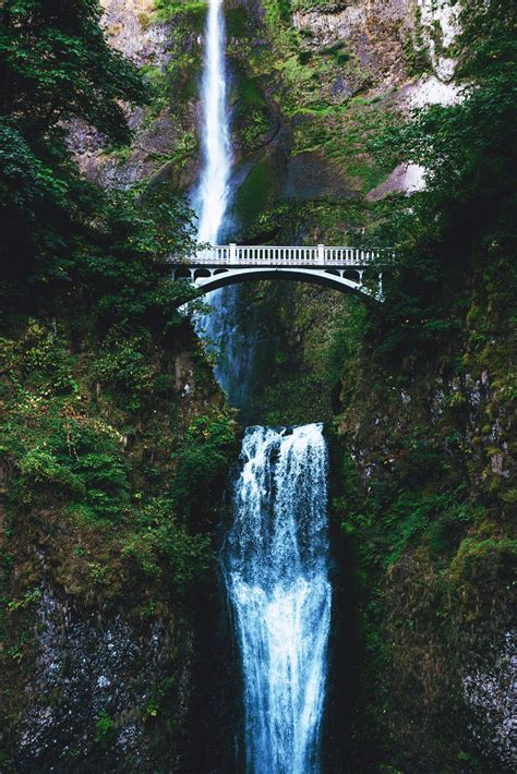 nature water bridge trees waterfall hd wallpapers