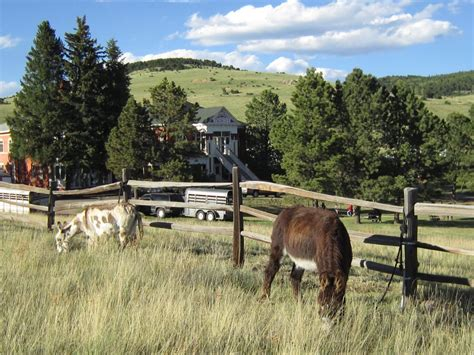 cripple creek hospitality house cripple creek hospitality house travel park hotels cripple creek co reviews