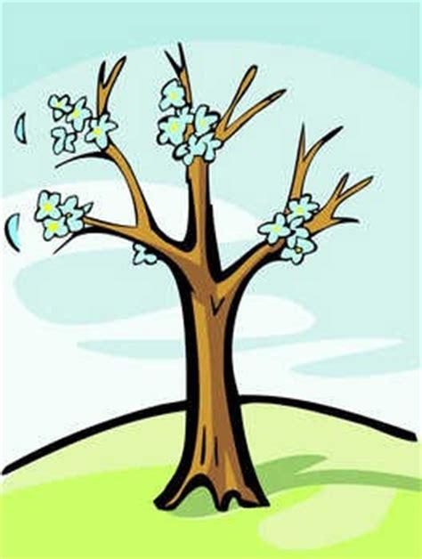 da vinci s rule of the trees englishclub