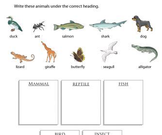 printable animal groups environment and nature busyteacher free printable
