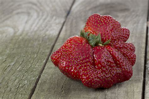 fruit that starts with d name of a fruit starting with d is strawberry a fruit