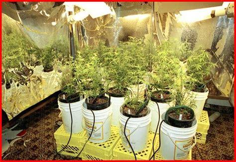grow room supplies hydroponics grow room hydroponicssystemsandsupplies