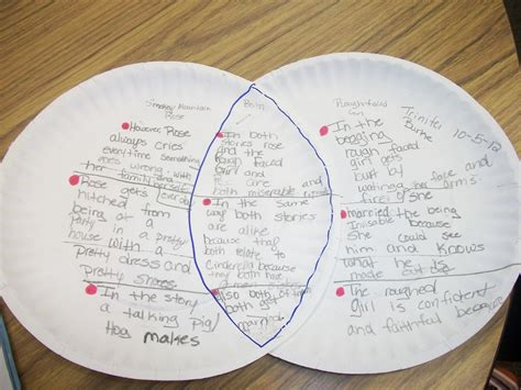 cinderella venn diagram teaching students comparing cinderella stories