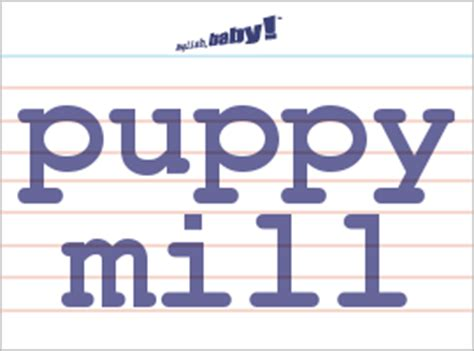 define puppy mill what does quot puppy mill quot learn at baby