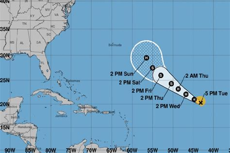 bermuda  alert  florence   hurricane