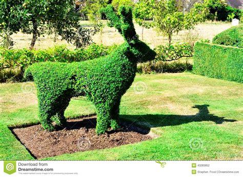 deer topiary topiary deer from an garden stock photo image