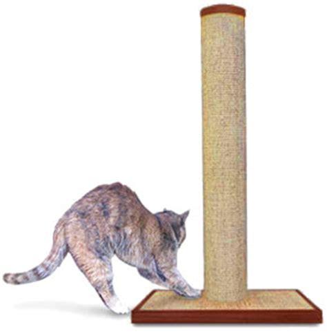 Why Do Cats Scratch Furniture why do cats scratch furniture purrfectpost