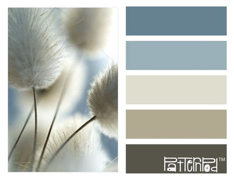 zen color palettes and colors on