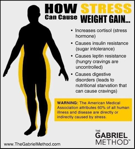 Giseles New Reason For Weight Gain by How Stress Can Cause Weight Gain Health Recovery Rest