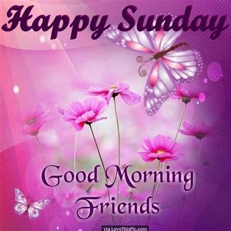 imagenes good morning happy sunday happy sunday good morning friends pictures photos and