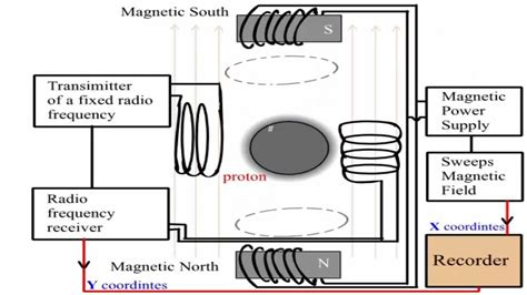 how does proton nmr work simple explanation of the proton nmr spectrometer