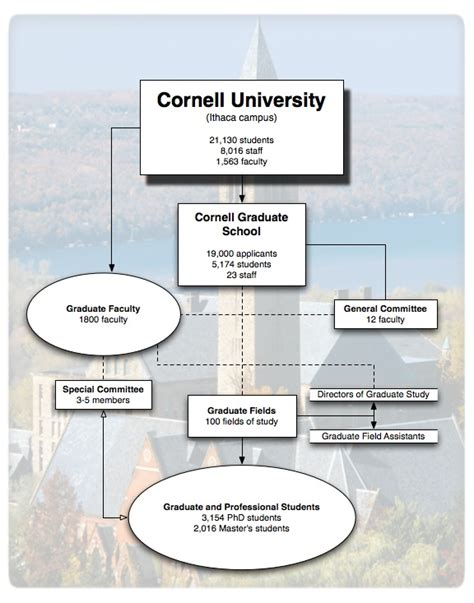 Cornell Mba Board by Governance And Structure Graduate School