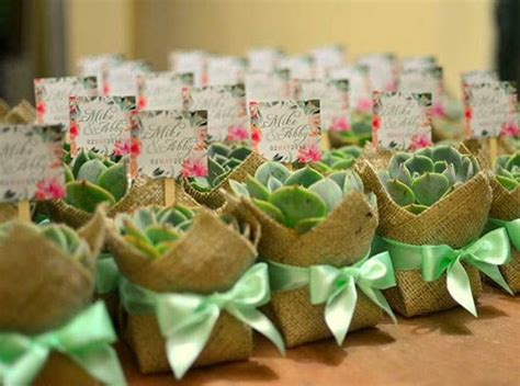 Plant Giveaways - 25 best wedding philippines images on pinterest philippines ali and combat sport