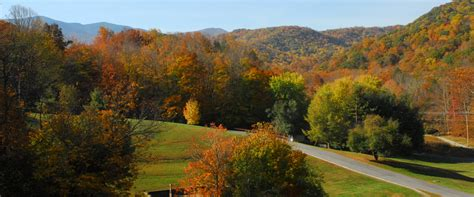 roan mountain state park tennessee state parks
