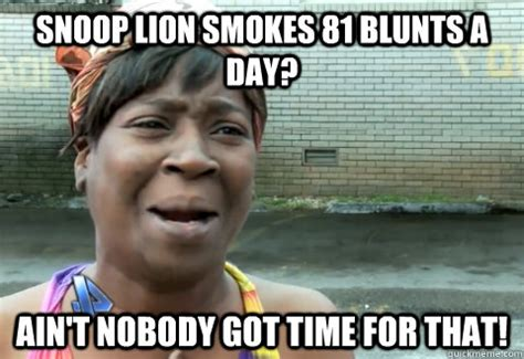 Nobody Meme - snoop lion smokes 81 blunts a day ain t nobody got time