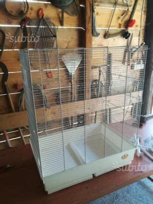 gabbie pappagalli usate gabbie uccelli usate posot class