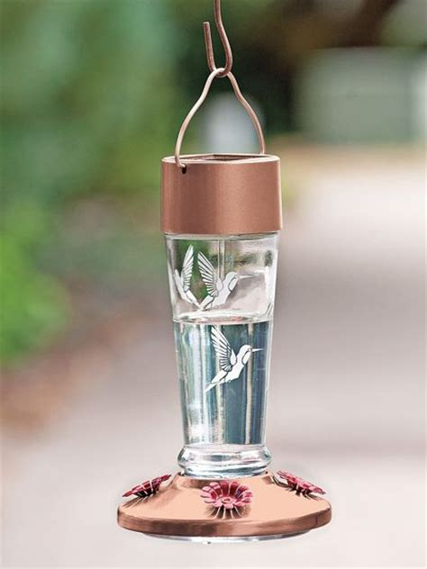 solar lighted glass hummingbird feeders solutions