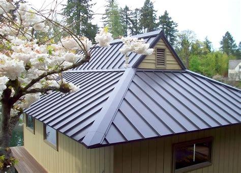 metal roof types smalltowndjscom metal roofs