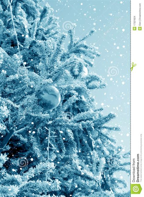 christmas tree and snowstorm stock images image 17321824