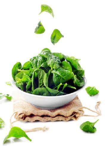 alimenti ricchi di ferro vegetali spinaci 12 alimenti vegetali ricchi di ferro