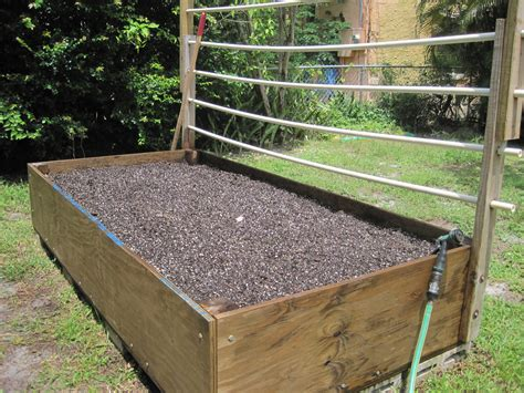 Soil Solarization For Raised Gardens Vegetable Box Garden