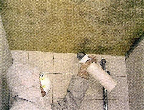Schimmel An Der Decke über Der Dusche by Ziegelei G 246 Tz Sanierungs Tipps