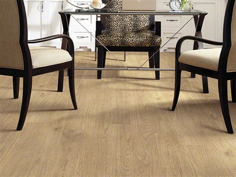 top 28 shaw flooring johnson city carpet s johnson