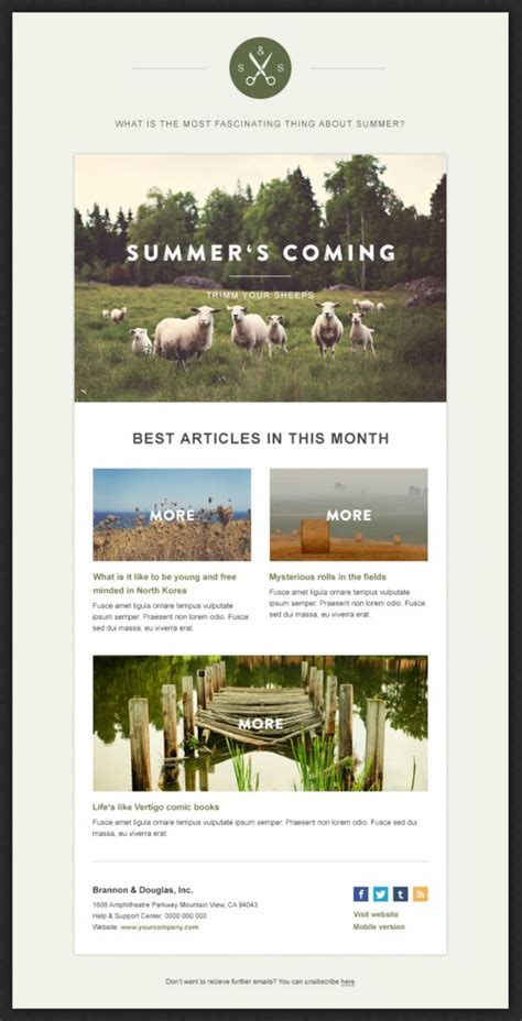 25 best ideas about newsletter design on