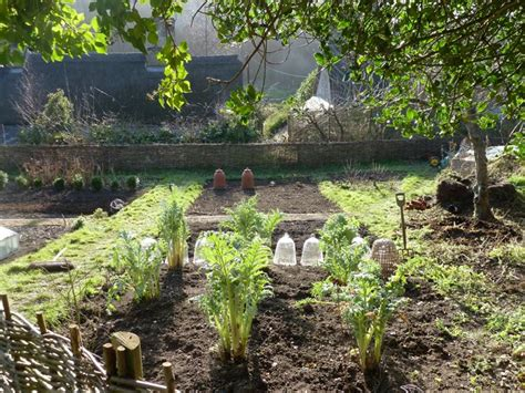 Garden Allotment Ideas 54 Best Allotment Ideas Images On Pinterest Vegetable Garden Gardening And Potager Garden