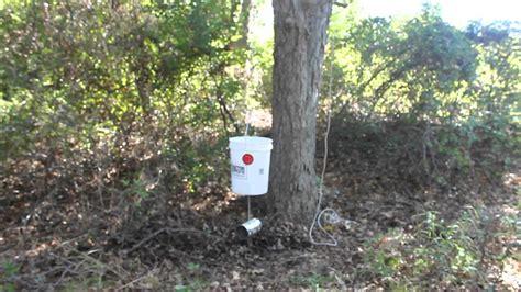 What Is The Best Deer Feeder 5 gallon deer feeder quot best design quot