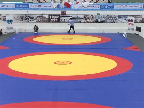 Olympic Mats by Mats At The Pan American Festival In Mexico City