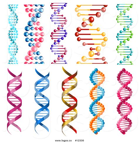 dna web page design template royalty free vector logo of double helix dna designs 10
