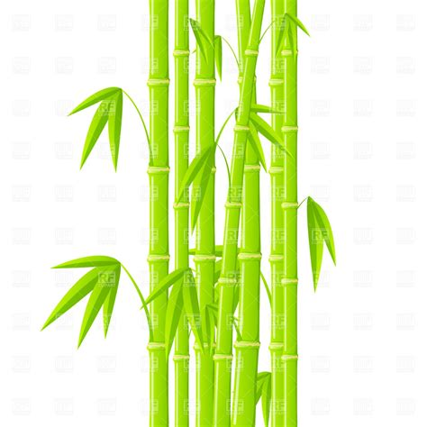 bamboo clip green bamboo stems with leaves vector image vector