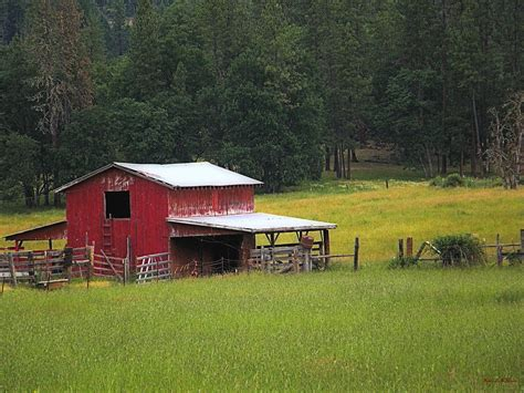 small barns small barn photograph by wendy mckennon