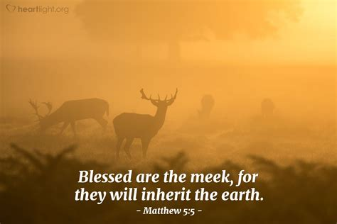 Daily Wisdom matthew 5 5 daily wisdom for tuesday october 30 2012