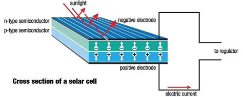 solar panel section how to install solar panels your diy guide to green solar energy