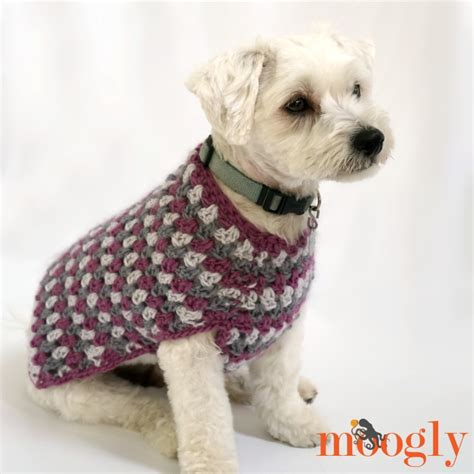 free crochet pattern for a dog coat well dressed dog coat moogly