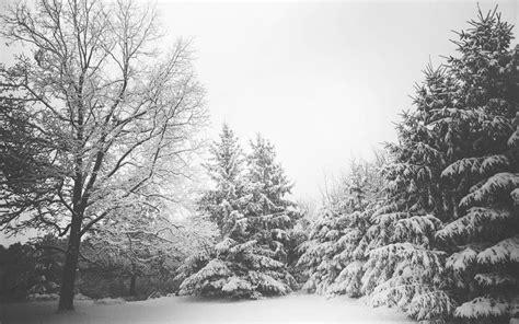 imagenes para fondo de pantalla invierno fondo de pantalla semanal el invierno en iphoneros