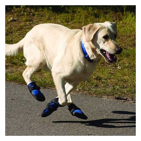 booties for pavement weather shoes for dogs style guru fashion glitz style unplugged