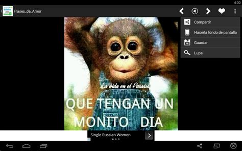 imagenes y palabras trailer frases y estados para whatsapp android apps on google play