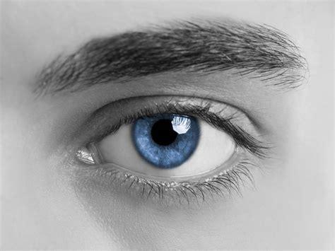 imagenes de unos ojos azules identifican al 250 nico y primer individuo del que descienden