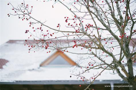 scheune im schnee die rainhof scheune und warum wir im schwarzwald skiurlaub