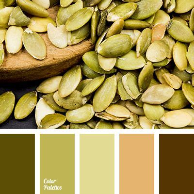 seeds color palette best 25 seeds color palettes ideas on seeds