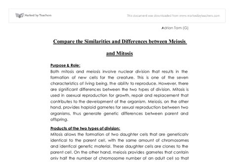 Mitosis And Meiosis Essay compare and contrast essay on mitosis and meiosis thedruge390 web fc2